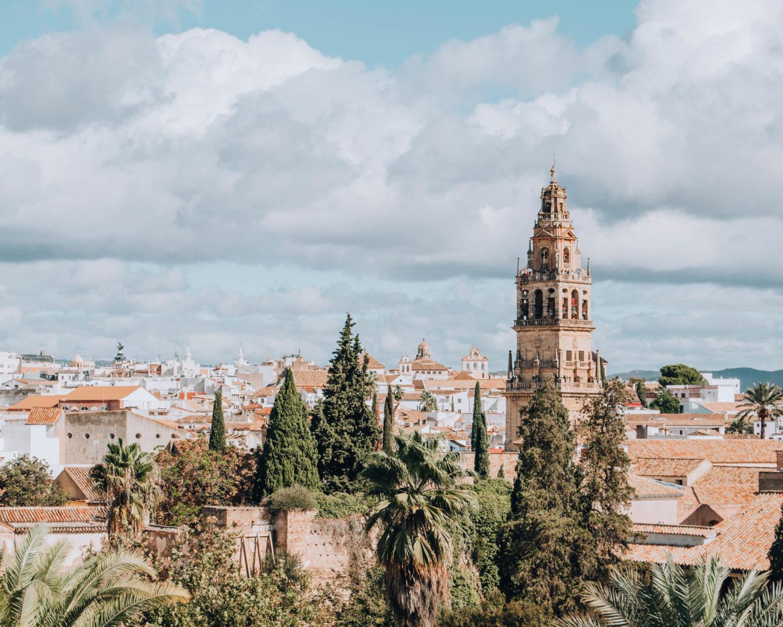 Vista del minareto della moschea araba e dei tetti e alberi della città