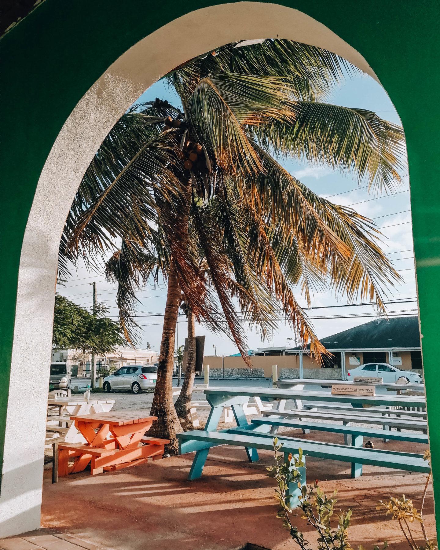 una palma e dei tavoli di legno su un'isola tropicale