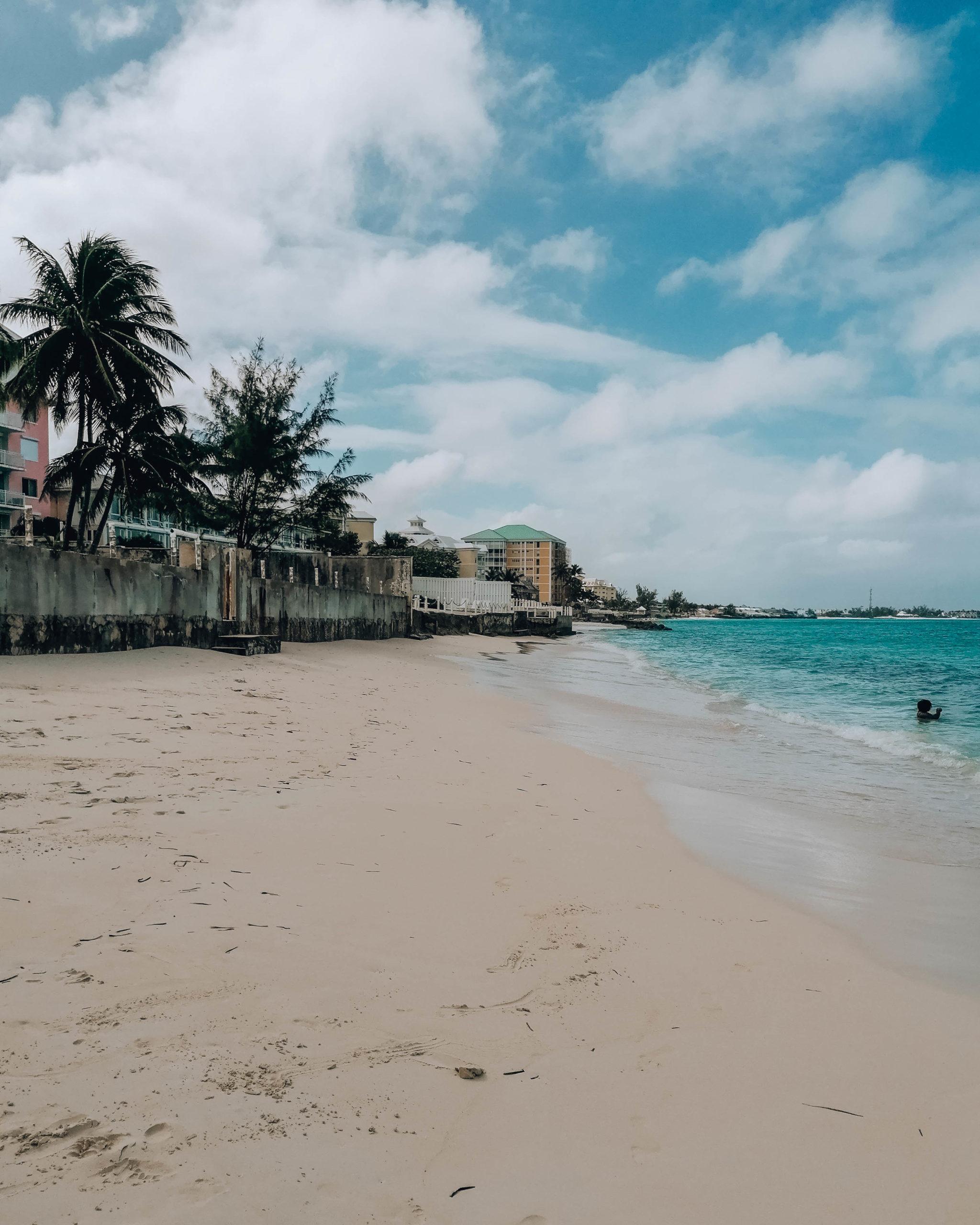 spiaggia caraibica con palme