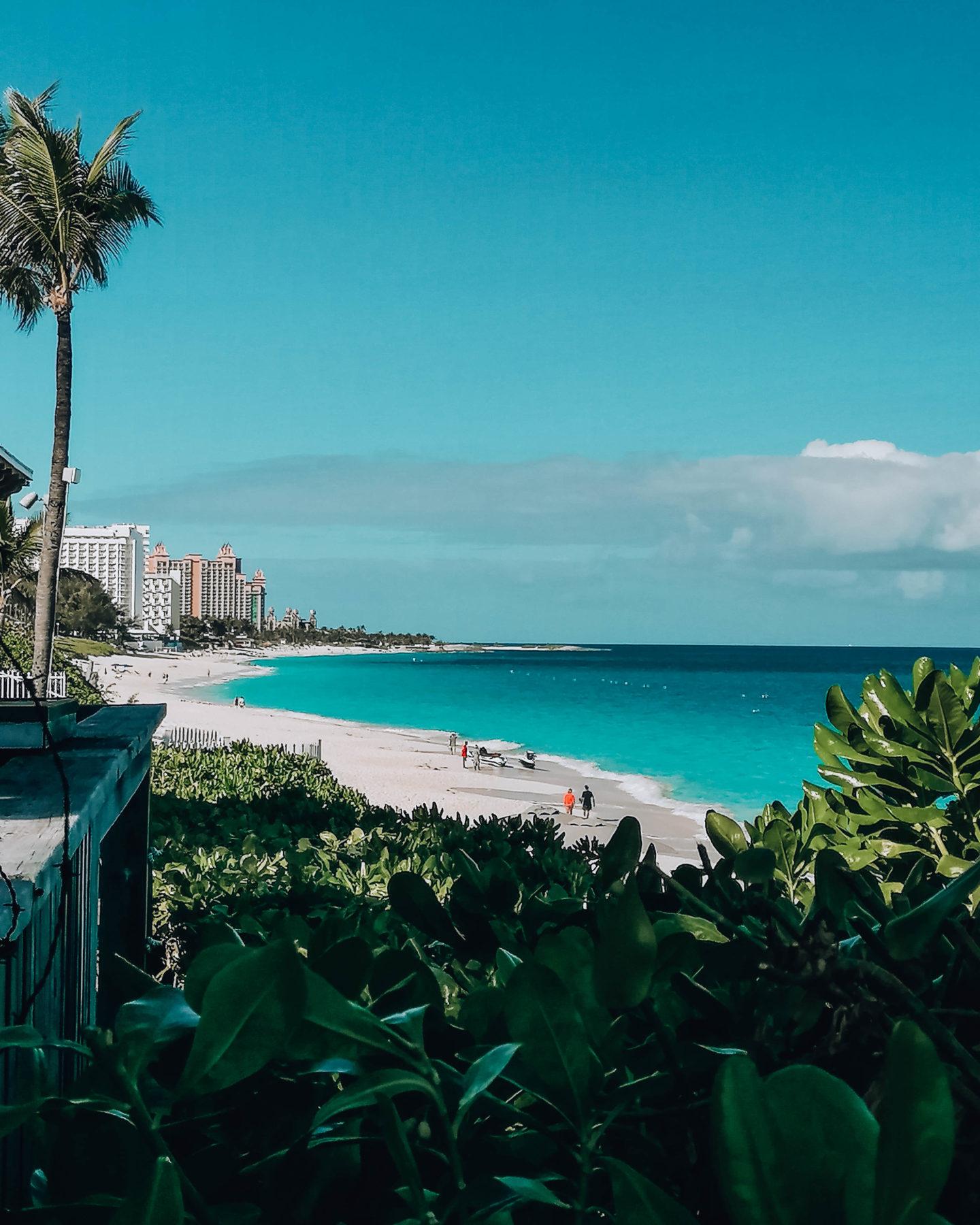 vista di spiaggia bianca incorniciata da fitta vegetazione