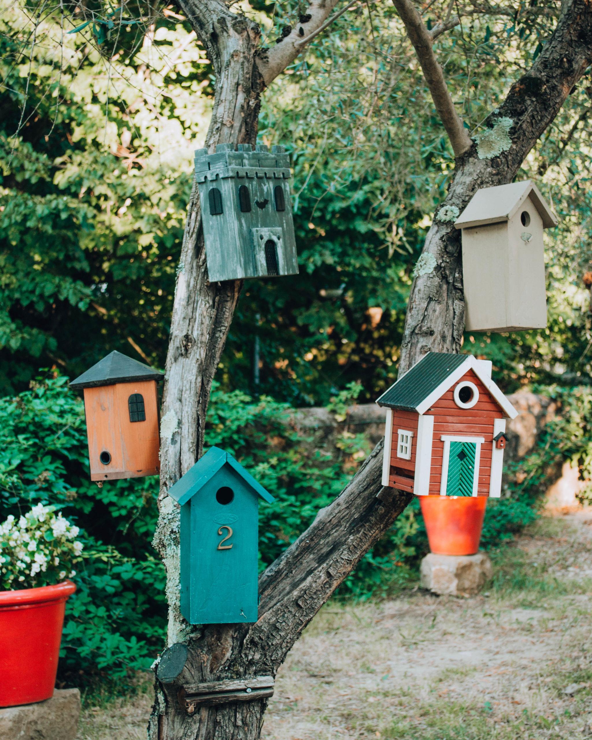 casette per uccellini costruite in legno su un albero