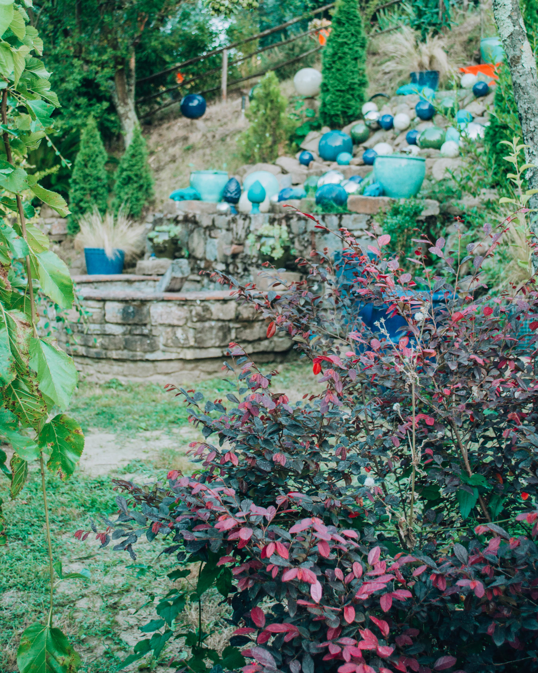 veduta di giardino con cascata sul fondo